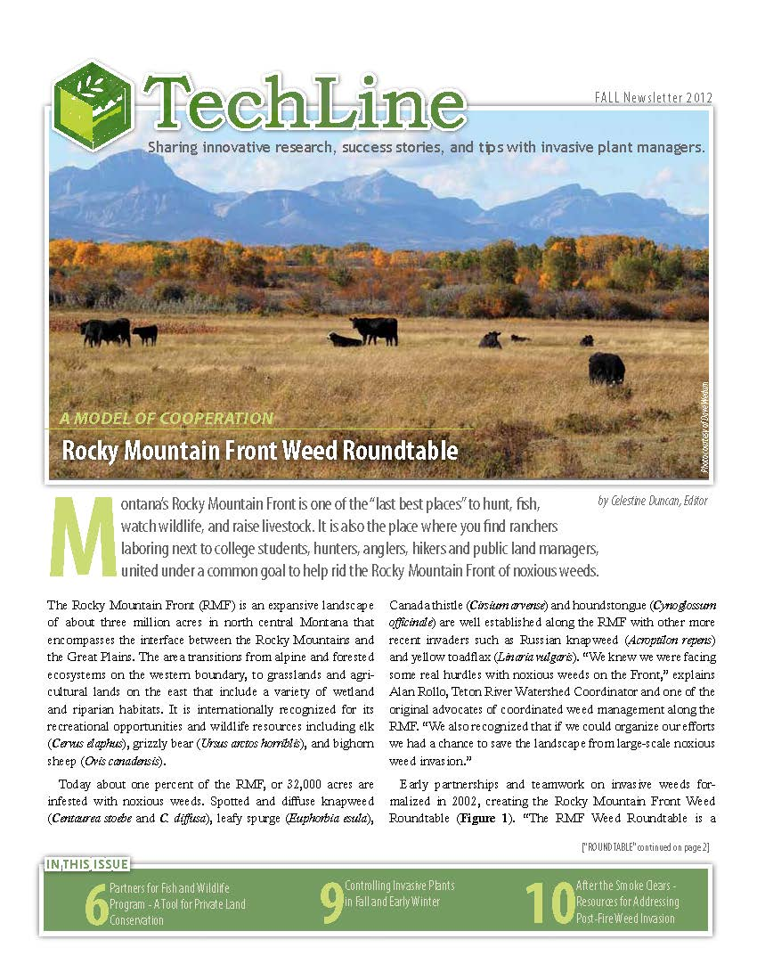 Techline_Fall2012 1.jpg