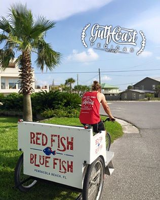pedicab wrap 2.jpg