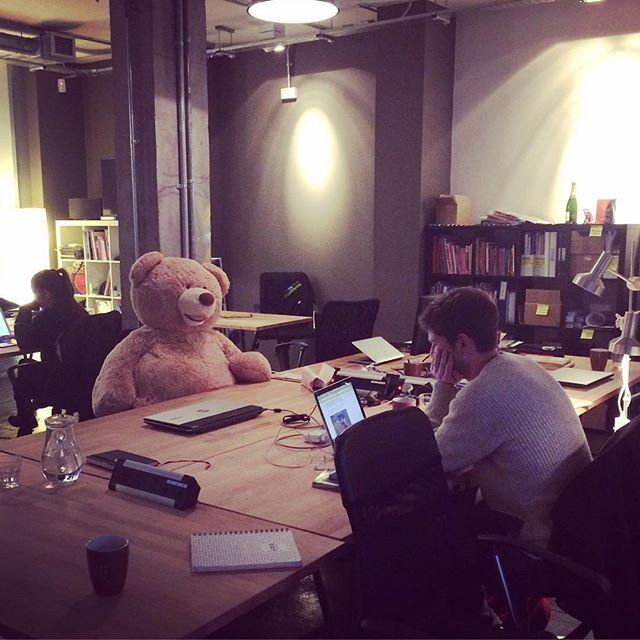Bright Little Labs' fluffiest team member #startup #entrepreneurship #bethnalgreenventures @detectivedot