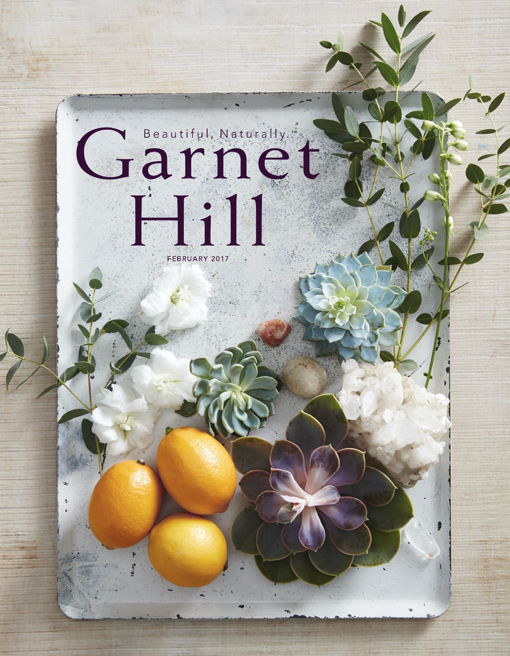 Garnet Hill Cover.png