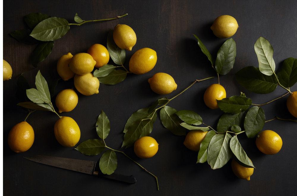 SLB_lemons(1).jpg