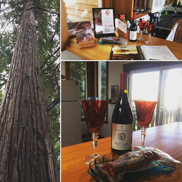 It's wine Wednesday again at Highwater house! We are so excited to partner Nobel Ridge wineries special reserve Pinot Noir with Haida Wild Seafood for this weeks offering. Highwater house + Haida Wild Seafood + Nobel Ridge Wine = Pure bliss for all the senses. #highwaterhouse #haidawild #nobleridgewinery #sublimesensations #winewednesday #treehousefun #lovewine