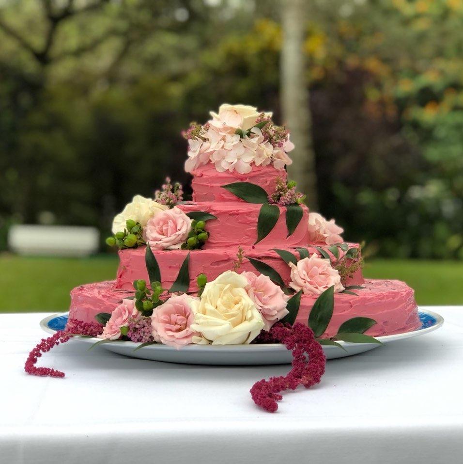 Rosey&Frankie_cake_square.jpg