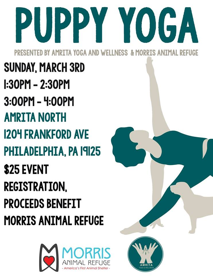 puppy yoga 3:3.jpg