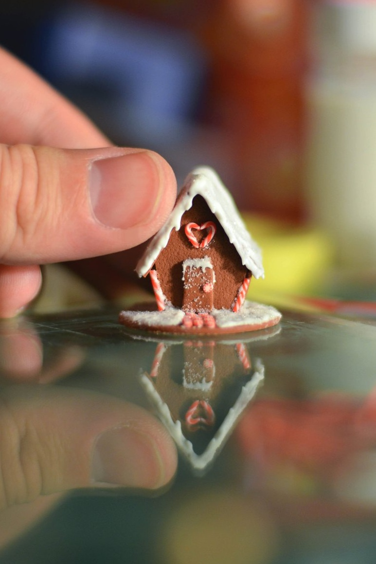 gingerbread_house____1_12_scale_miniature_by_abohemianbazaar-d6wmcw0.jpg