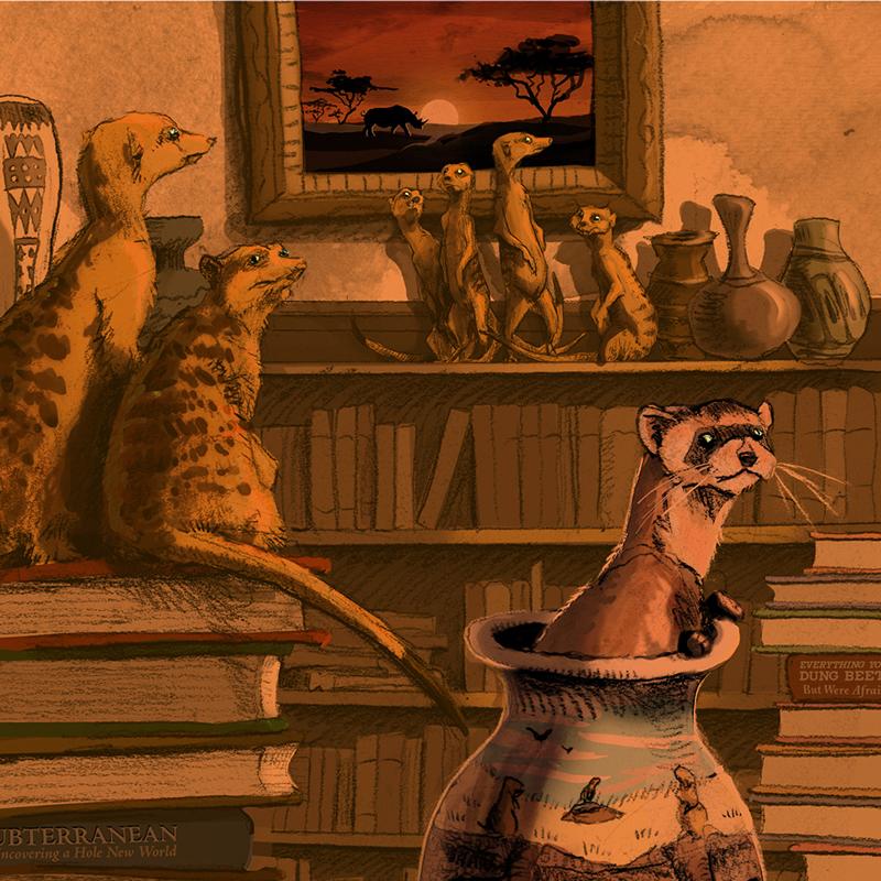 Sunrise_Library-Eric-Losh.jpg
