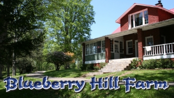 76129-Blueberry Hill Farm bizcards - logo.jpg