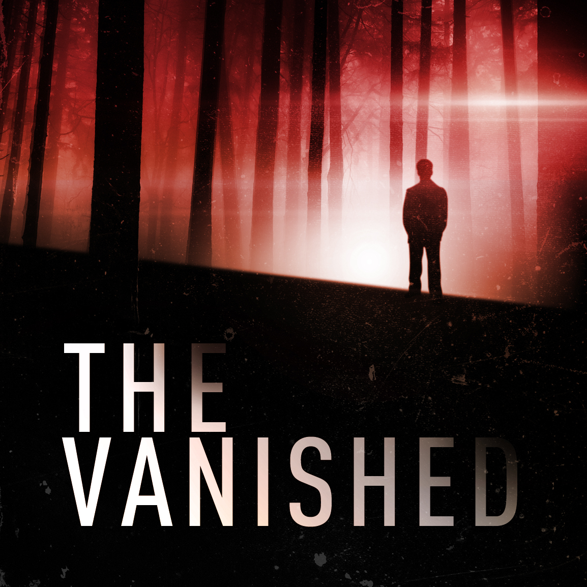 Image result for the vanished podcast