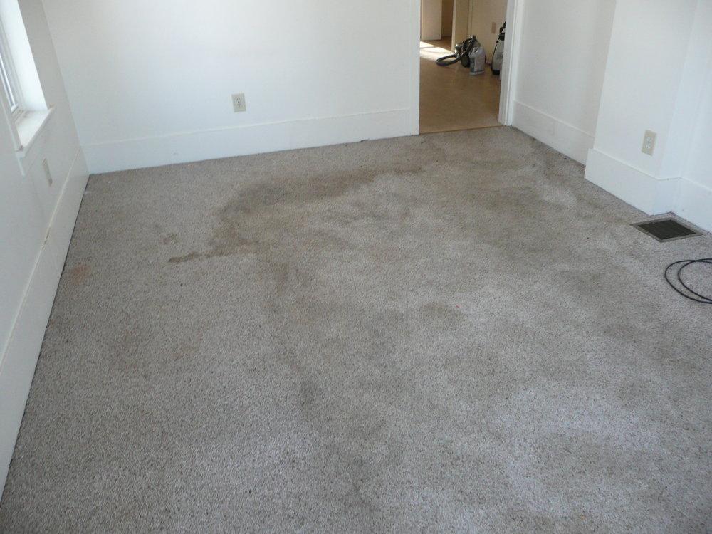 Trashed Living Room Carpet