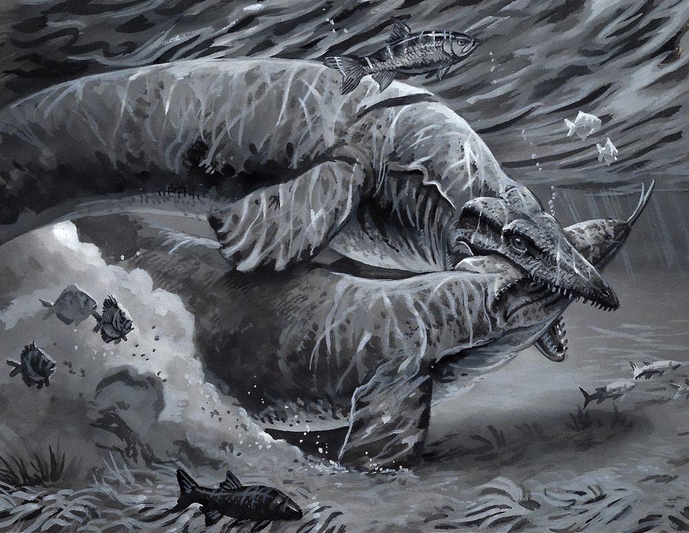 Battling Mosasaurs, gouache on paper, 2017