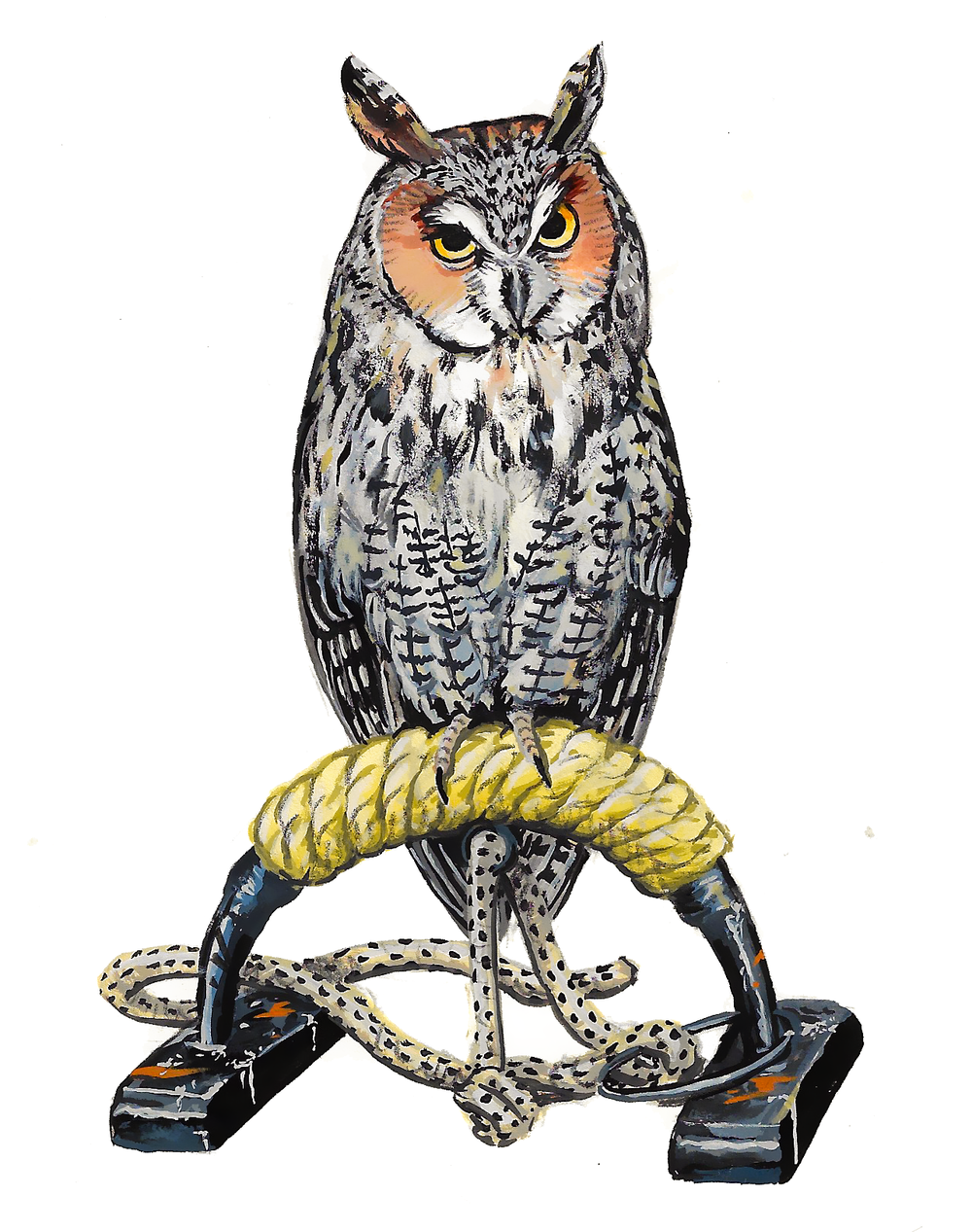 Long-Eared Owl , gouache on paper, 2017