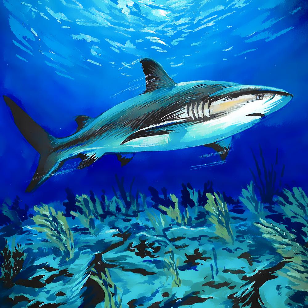 Shark , gouache on paper, 2017