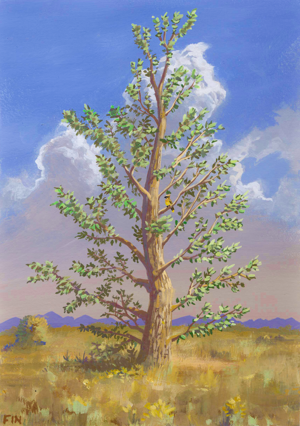 Tree on Nose Hill , casein on paper, 2016