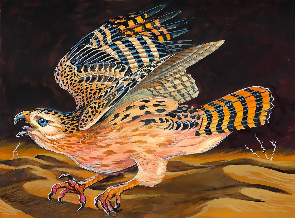 Arrakeen Hawk , gouache on paper, 2017