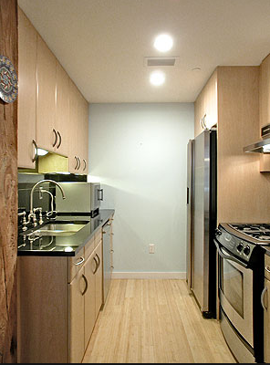 galley_kitchen_2015-06-30_1956.png