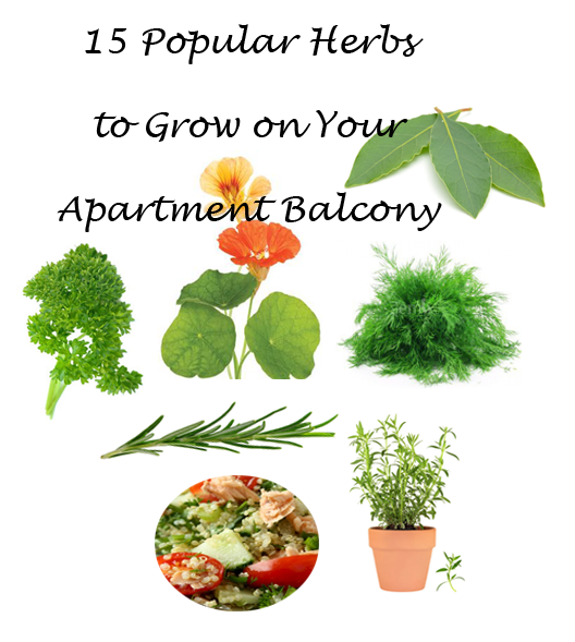 15 herbs-apartment-balcony image copy.png