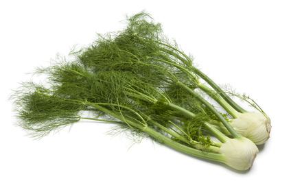 fennel-Benefits-of-Fennel-Juice.jpg