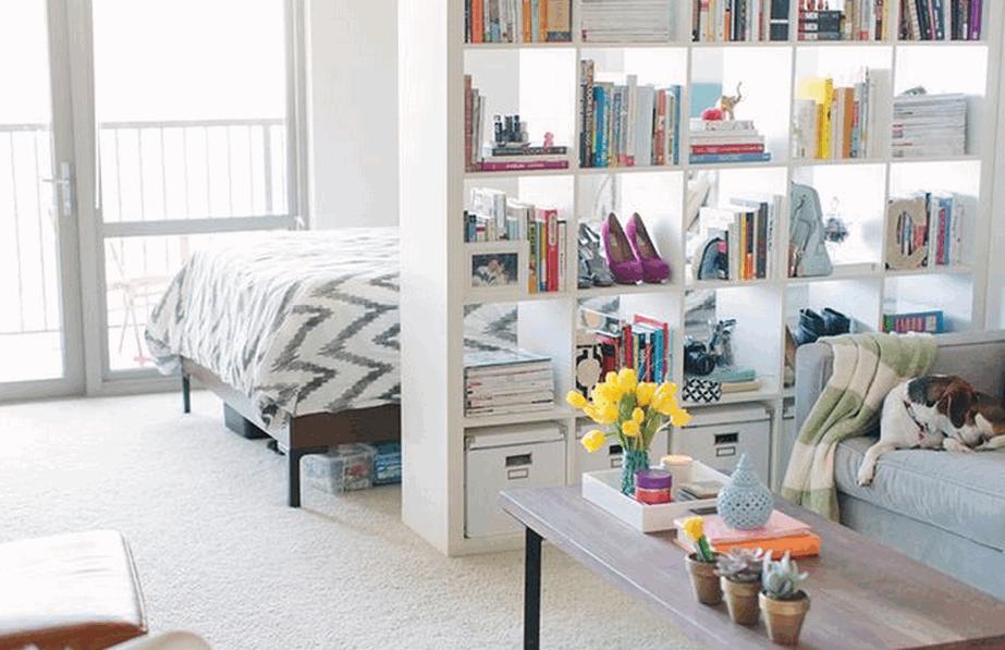 studio-apt-bookcase-divider-2015-08-07_1353.png