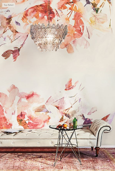 Rosella Mural from   Anthropologie