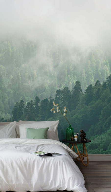 Misty Forest Wallpaper   Murals Wallpapers UK