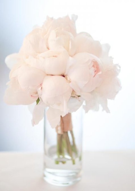 bouquet_of_powder_rose_color_peonies2019-03-09_1516.png