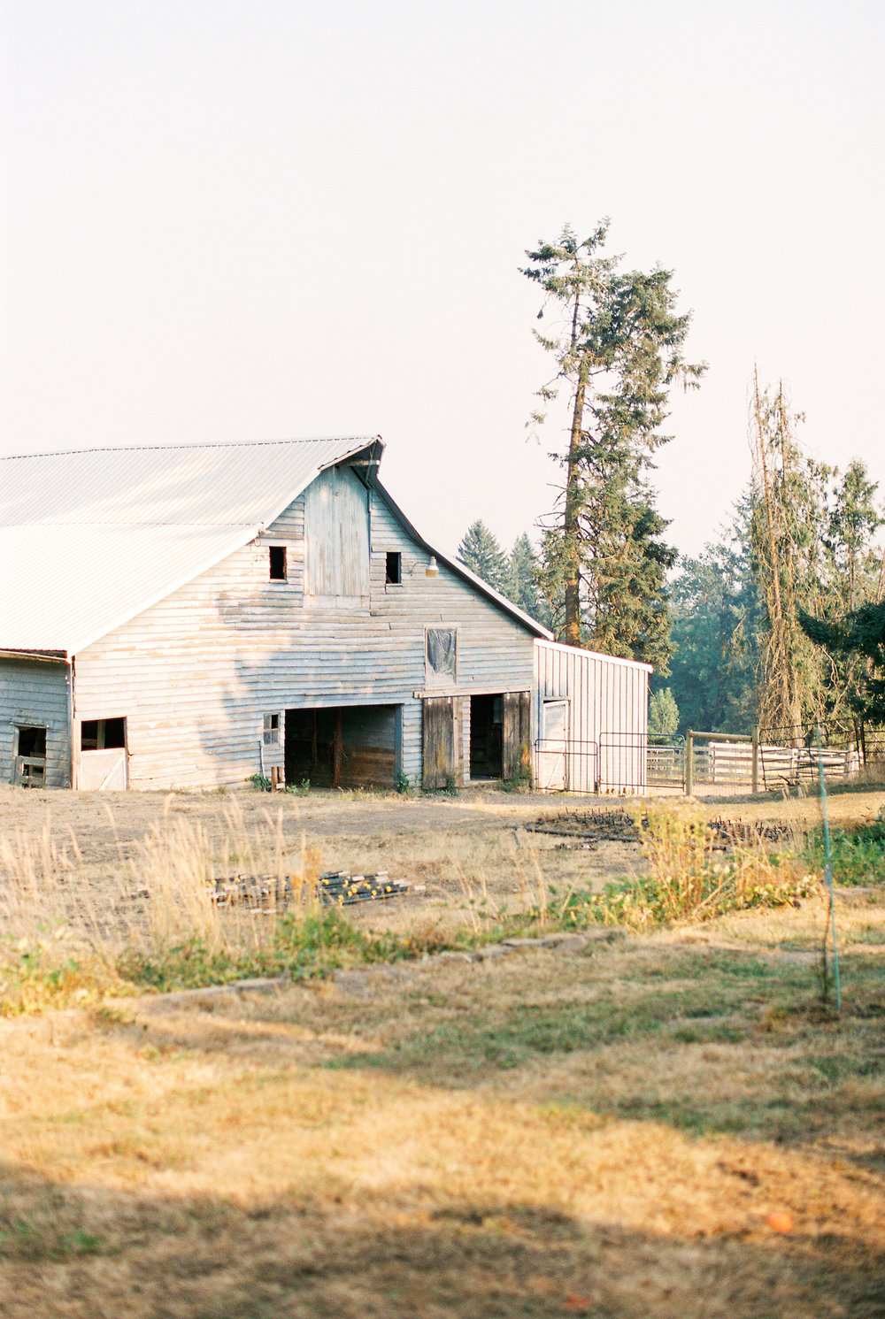 CANBY OREGON - ELOPEMENT