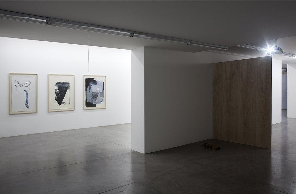 Sofía Quirno. Importa un pepino, curaduría Guido Ignatti, Hache Galería, Buenos Aires, Argentina, 2017_Fotografía Ignacio Iasparra_8 baja.jpg