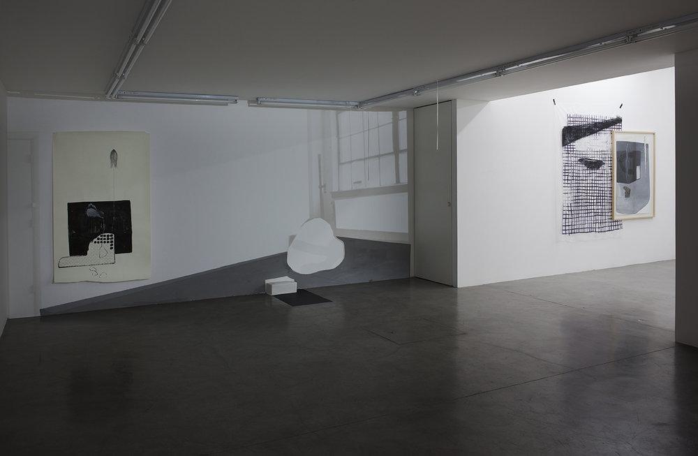 Sofía Quirno. Importa un pepino, curaduría Guido Ignatti, Hache Galería, Buenos Aires, Argentina, 2017_Fotografía Ignacio Iasparra_9 baja.jpg