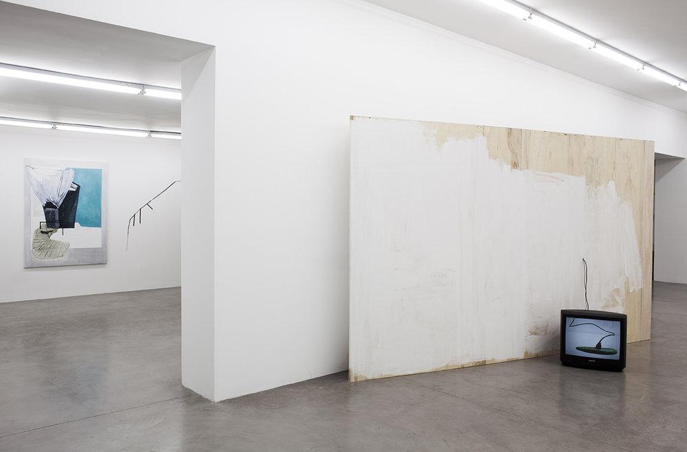 Sofía Quirno. Importa un pepino, curaduría Guido Ignatti, Hache Galería, Buenos Aires, Argentina, 2017_Fotografía Ignacio Iasparra_11 baja.jpg
