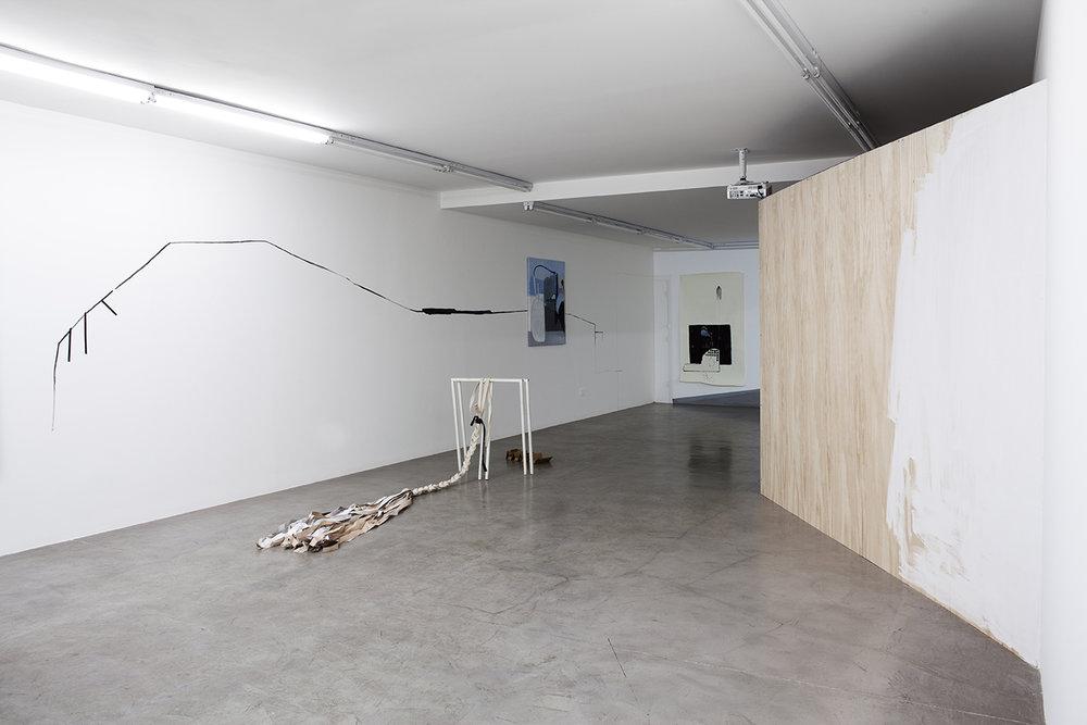 Sofía Quirno. Importa un pepino, curaduría Guido Ignatti, Hache Galería, Buenos Aires, Argentina, 2017_Fotografía Ignacio Iasparra_12 baja.jpg