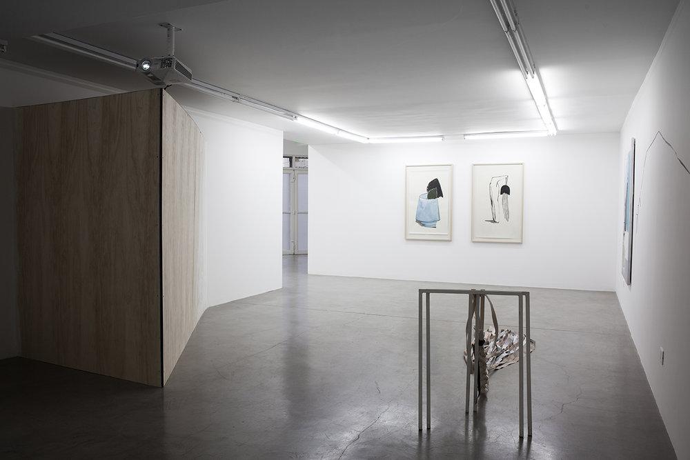 Sofía Quirno. Importa un pepino, curaduría Guido Ignatti, Hache Galería, Buenos Aires, Argentina, 2017_Fotografía Ignacio Iasparra_15 baja.jpg