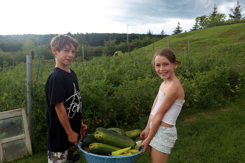 The Unscented Company - Harvesting Summer with the Kids