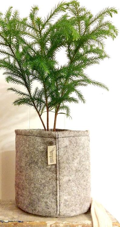 ....Geotextile Planter | Empoté..Pot en géotextile | Empoté....