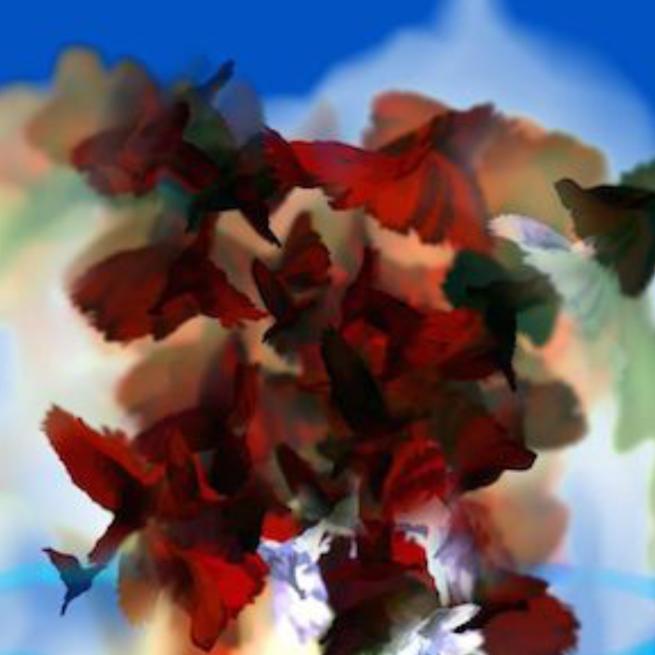 Digital Artist Turns Randomness Into Beauty
