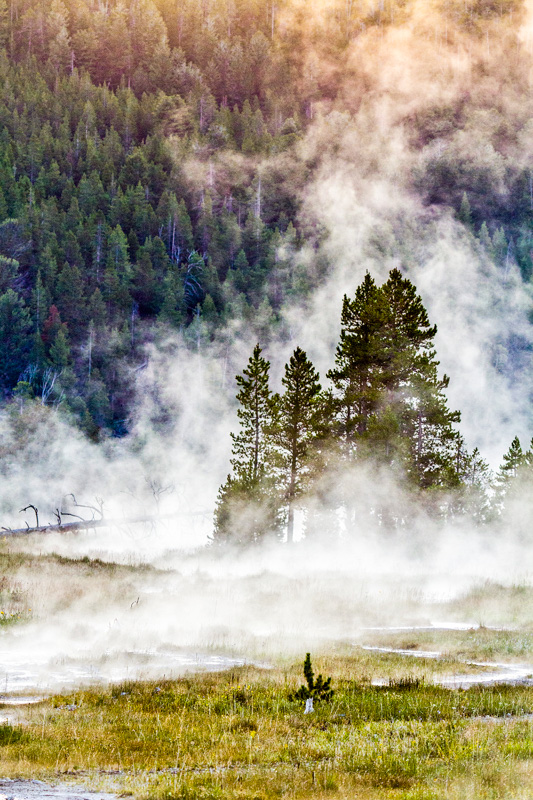 © Ron Marabito, Lower Geyser Basin, Yellowstone NP