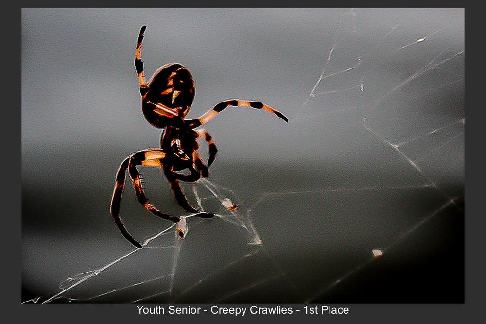 Youth Senior-01.jpg
