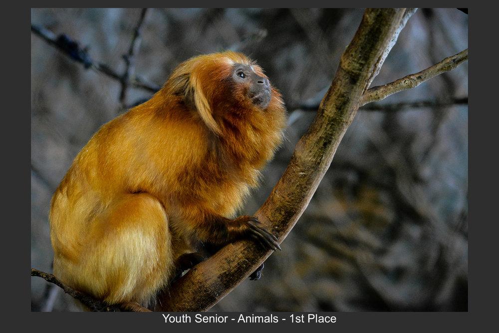 Youth Senior-04.jpg