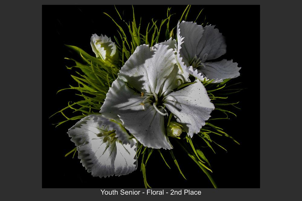 Youth Senior-07.jpg