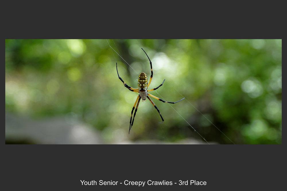 Youth Senior-13.jpg