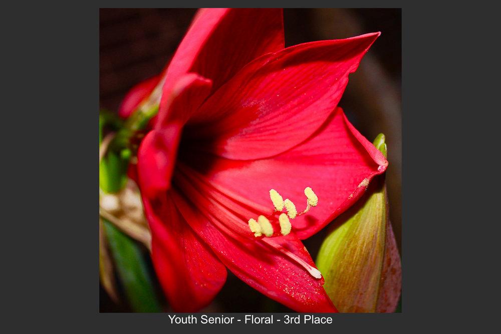Youth Senior-15.jpg