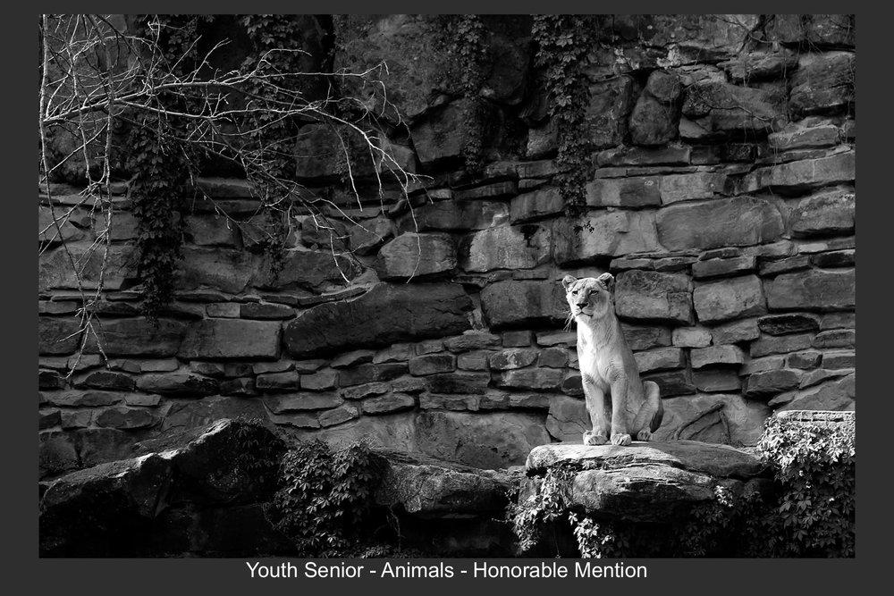 Youth Senior-17.jpg
