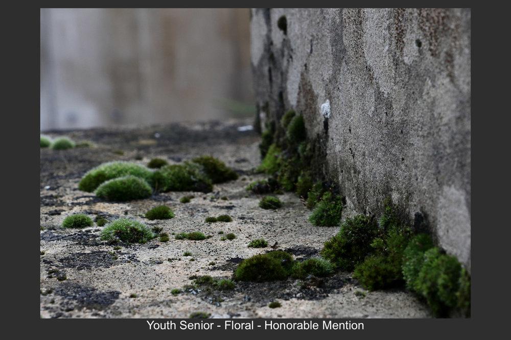 Youth Senior-18.jpg