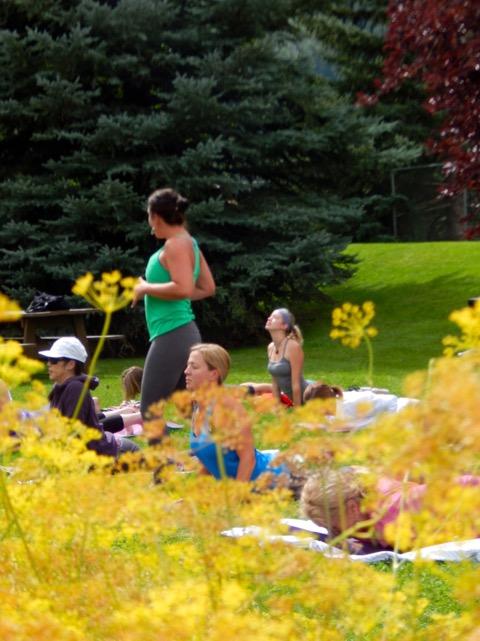 yoga garden2.JPG