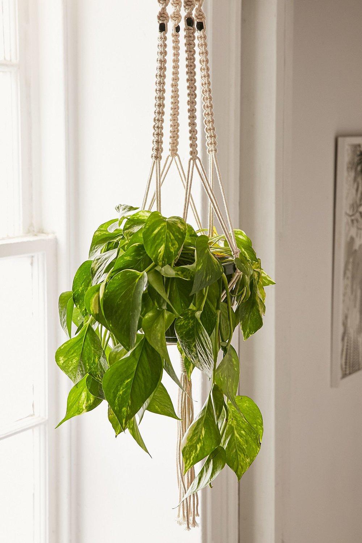 Iris Macrame Hanging Planter