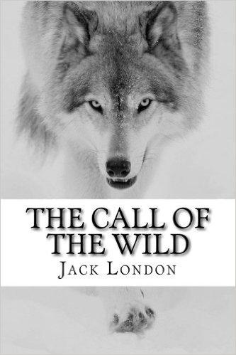 book cover 1.jpeg