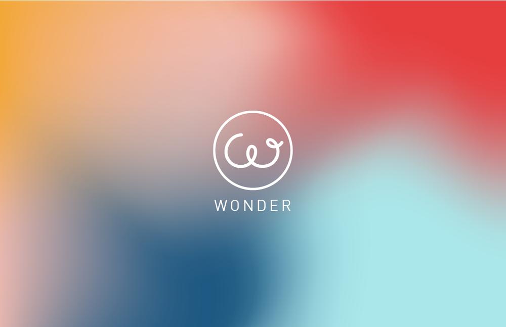 Wonder Presentation .png