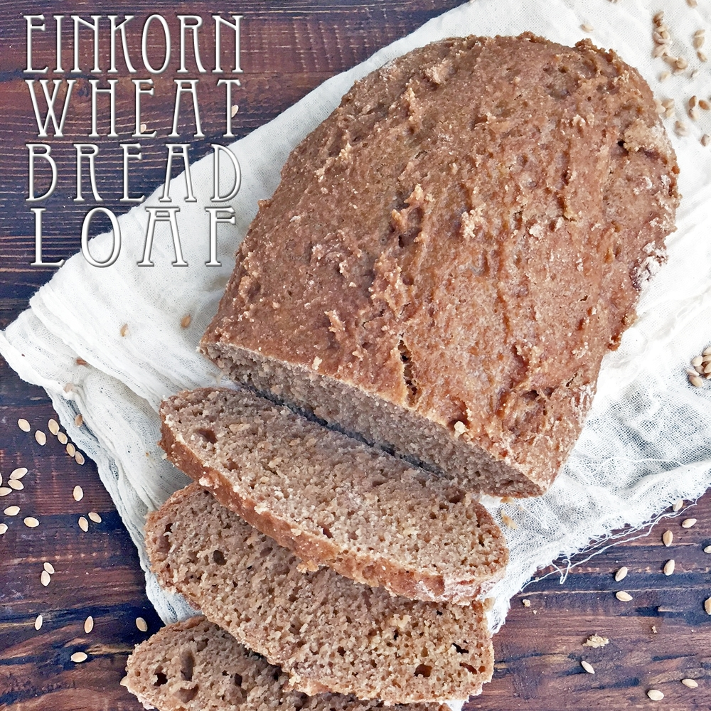 Einkorn Wheat Bread Loaf
