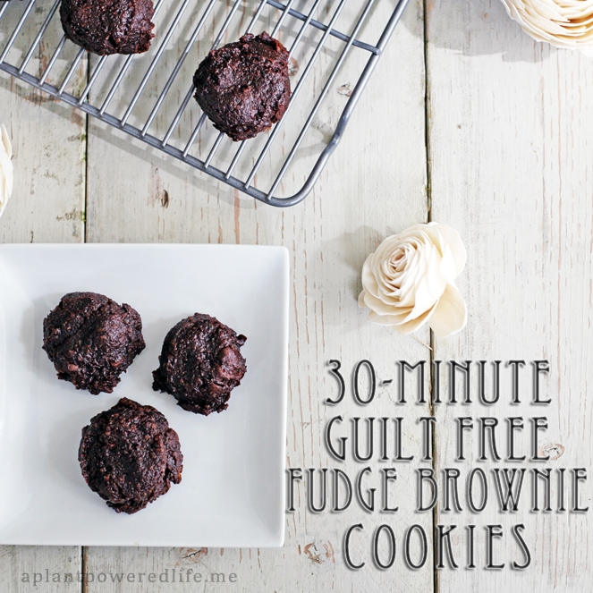30 Minute Guilt Free Fudge Brownie Cookies