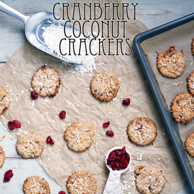 Cranberry Coconut Crackers