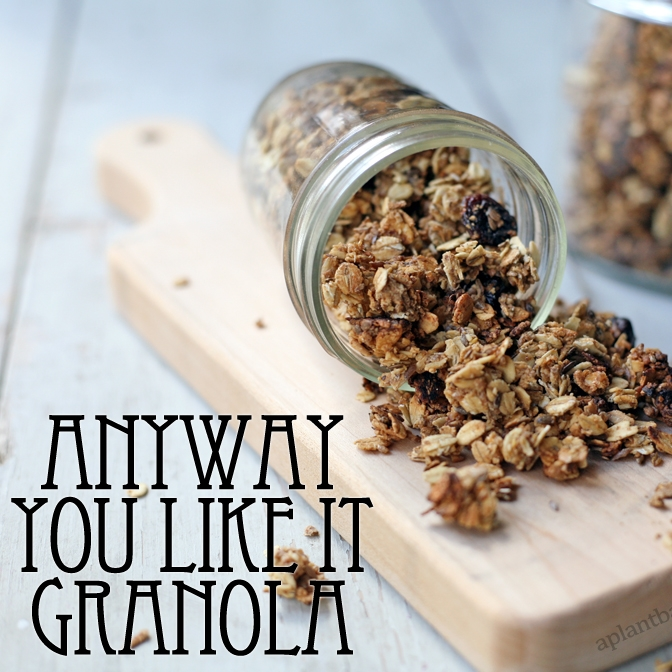 Anyway You Like It Granola
